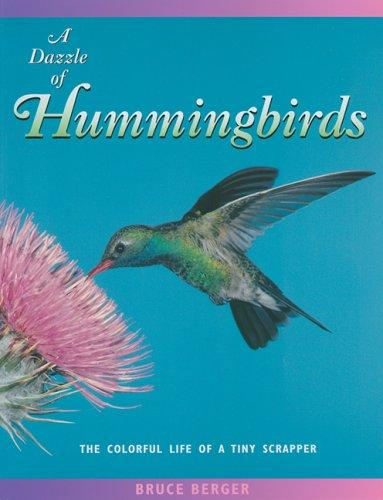 A dazzle of hummingbirds