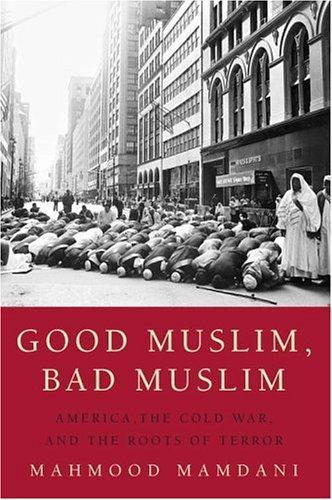 Download Good Muslim, bad Muslim