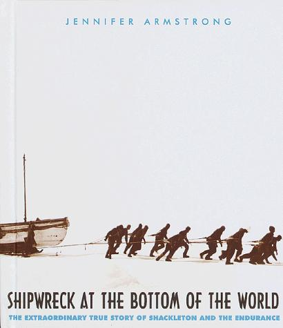 Download Shipwreck at the bottom of the world