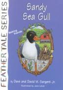 Download Sandy Sea Gull