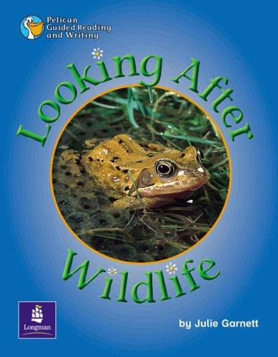 Looking After Wildlife by Julie Garnett
