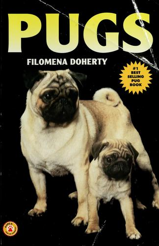 Pugs by Filomena Doherty